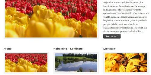 Aeffort – Adviseurs Arbeid, Management en Organisatie – WordPress Website